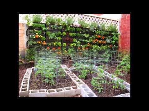 Stunning Small backyard vegetable garden