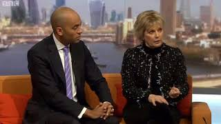 Chuka Umunna and Anna Soubry on the ANTI-BREXIT alliance in parliament