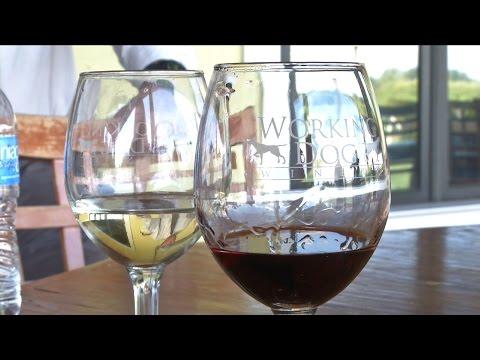 Celebrating New Jersey Wine Week