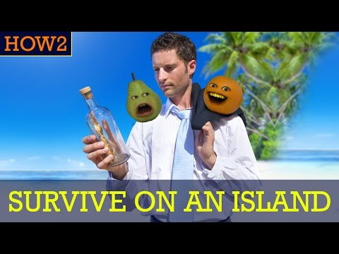 HOW2: How to Survive on a Deserted Island!