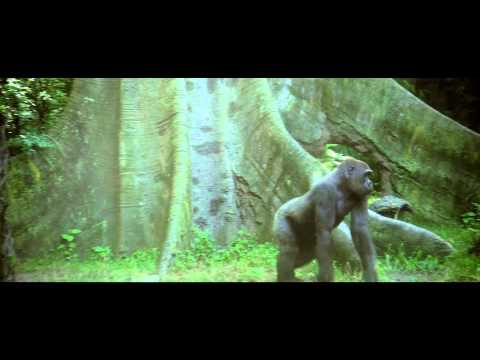 Biodiversity is us - overview  film - 5 mn