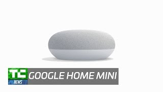 This is the Home Mini, Google's $49 answer to the Amazon Echo Dot