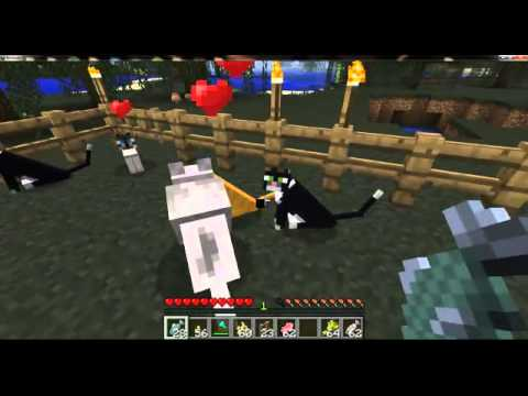 Minecraft 1.2: Turning ocelots into Cats And Cat Breeding