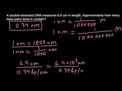 How to calculate number of base pairs in a DNA fragment