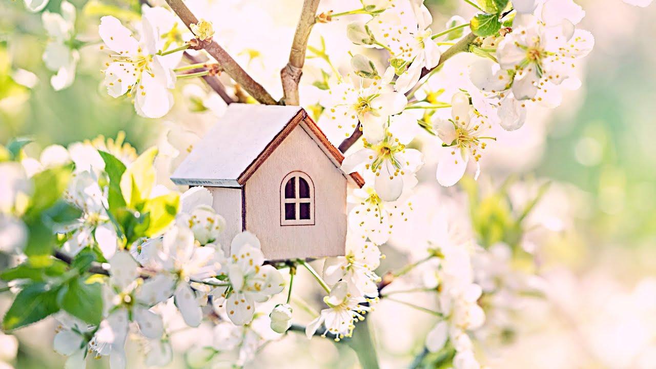 3시간 포근한 봄맞이 아침음악 🎵 힐링음악, 스트레스해소음악, 명상음악, 요가 (Spring)
