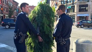 Guy DRESSD LIKE A TREE Gets Arrested In Maine | What's Trending Now