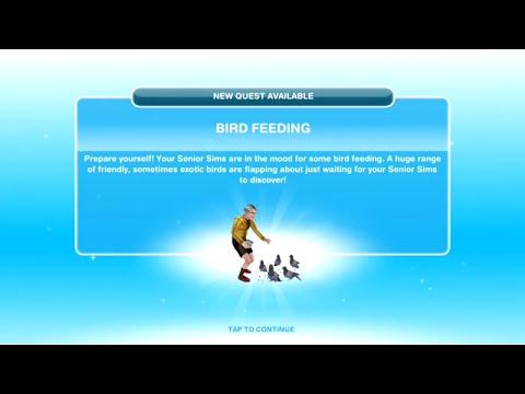 [The Sims Freeplay] - Bird Feeding Görevi