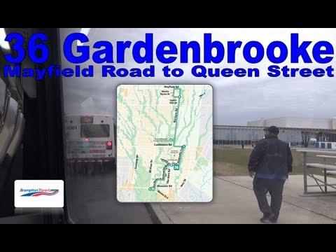 36 Gardenbrooke - Brampton Transit 2016 Nova Bus LFS 1614 (Mayfield Road to Queen Street)