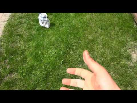 How To Spread Grass Seed With Your Hand (No Tools Needed)