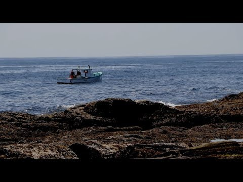 Cape Elizabeth Maine Ocean View - Relaxing Video