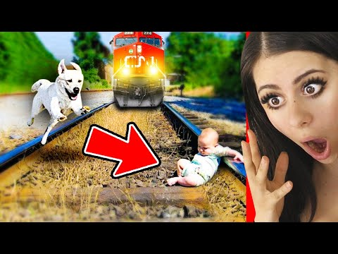 Unbelievable Animals That Changed Peoples Lives !