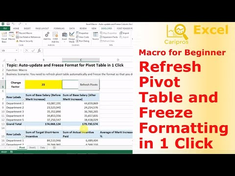 Auto-Refresh Pivot Table and Freeze Format in 1 Click - Macro for Beginner