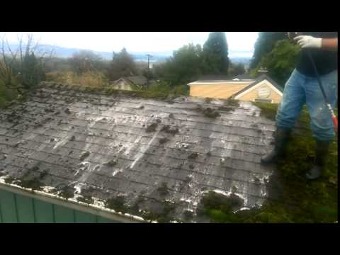 How to remove moss and clean a roof