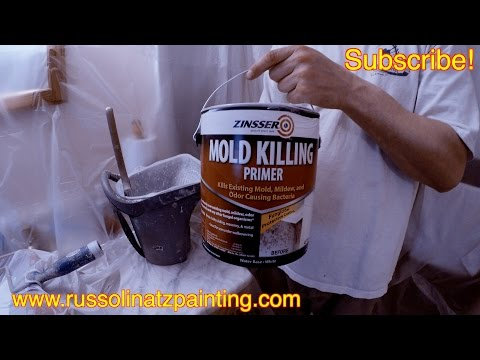 How to kill Mold and Mildew Stains on a Shower Ceiling (Part 2) - Zinsser Mold Killing Primer