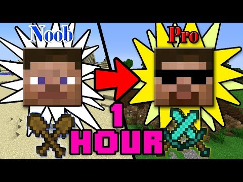ONE HOUR of How to Transform from NOOB to PRO in Minecraft