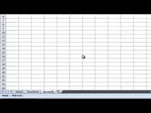 Excel 2007 - Renaming a Worksheet