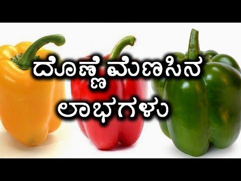 Benefits Of Capsicum/ Bell Peppers | ಬಣ್ಣ ಬಣ್ಣದ ದೊಣ್ಣೆಮೆಣಸಿನಕಾಯಿಯ ಲಾಭಗಳು