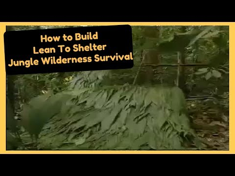 How to Build a Lean To Shelter Jungle Wilderness Survival