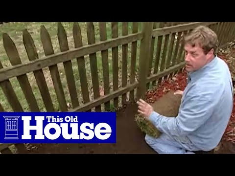 How to Lay Sod - This Old House