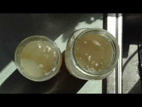 Gelatinous Bone Broth: Stock pot vs. Crock pot