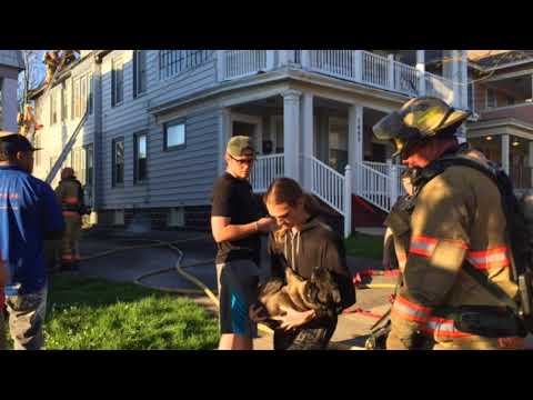Dog jumps from 3rd floor of Syracuse house fire