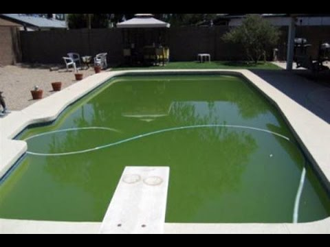 How to make your pool water clear