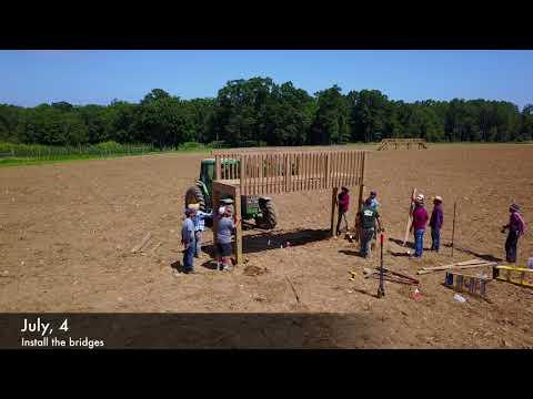 Making the Corn Maze