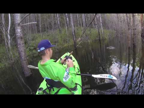 BM90 Diztek Lure - Australian Bass Fishing