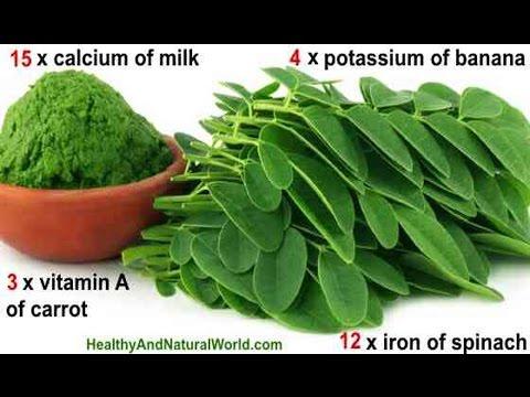 The Amazing Health Benefits of Moringa Oleifera