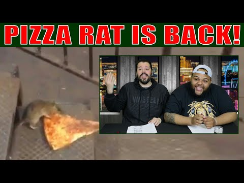 Pizza Rat is Back! Or is he? We Smell a Rat!