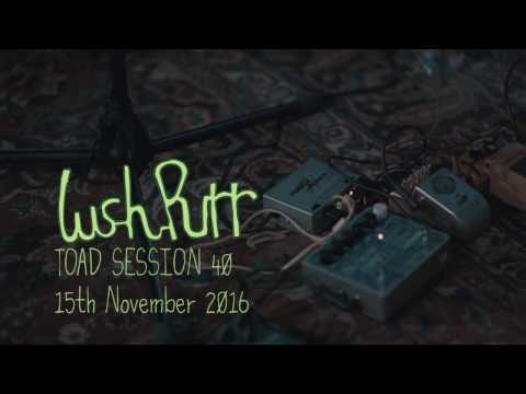 Lush Purr - Mr. Maybe (Toad Session)