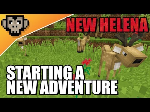 🔴 New Helena | Introduction To Something New | Stream #1