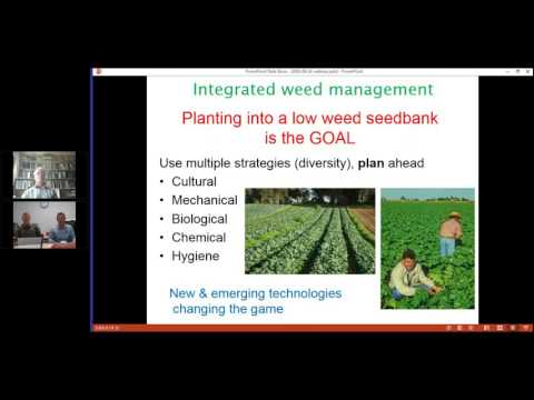 Integrated Weed Management for the Australian Vegetable Industry