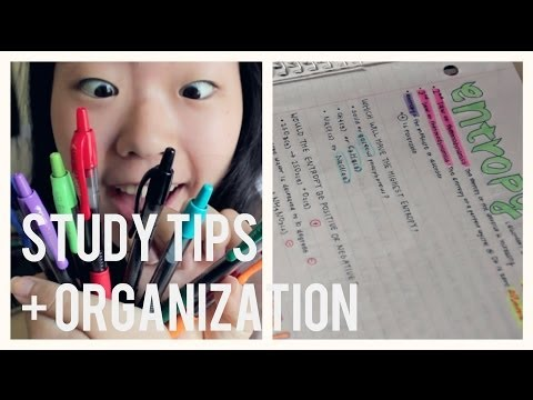 Back to School: How to get Straight As Study Tips | Free Study Guide