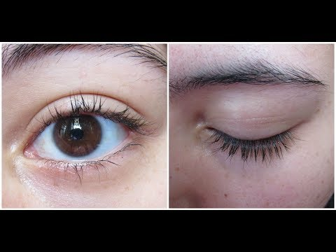 Does Vaseline really help your eyelashes and eyebrows grow?
