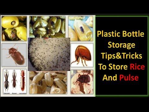 Long Term  Rice, Pulses, Cereals and Spices Storage Secret || Fire Technique