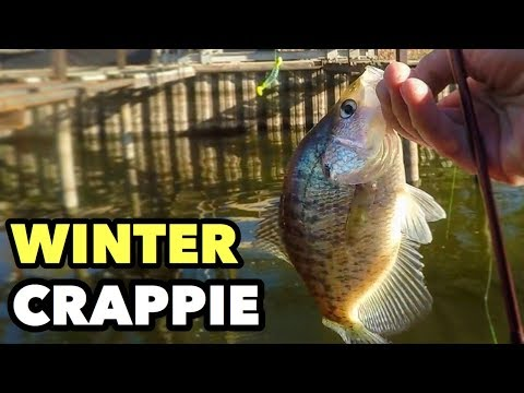 BEST WINTER TIPS & TECHNIQUES TO CATCH CRAPPIE!!