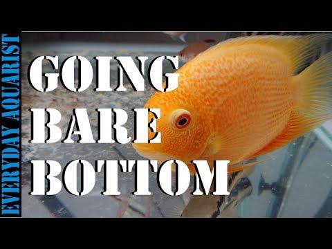 Bare Bottom Aquarium
