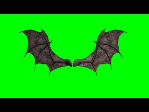 demon wings in motion - green screen animation - front view