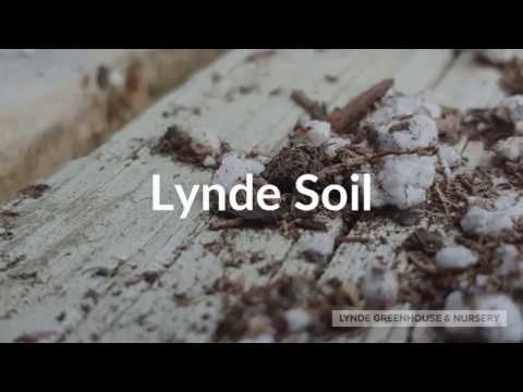 Bagging Lynde Soil