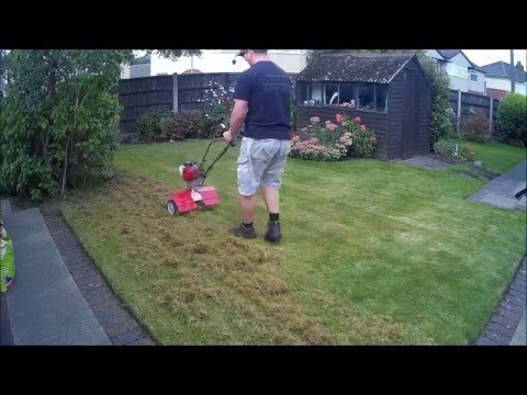 HOW TO REMOVE MOSS FROM YOUR LAWN / GRASS using a MANTIS TILLER. Dethatching / Scarifing a lawn