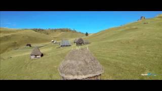 Download Cãtunul Zapodie Muntele Mare, Apuseni