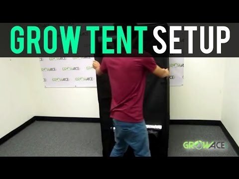 GrowAce.com - Grow Tent Setup Hydroponics GrowAce.com