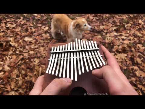 All The Small Things by blink-182 on a Kalimba