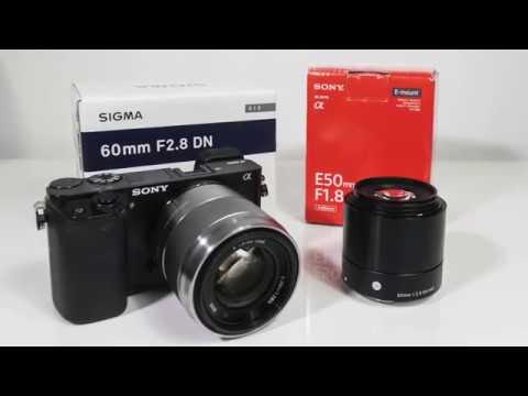 Sony E 50mm F1.8 OSS vs Sigma Art 60mm F2.8 DN Sharpness Comparison