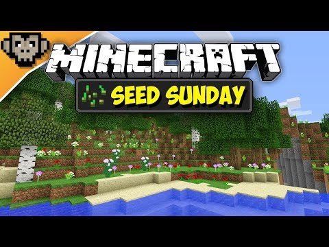 Minecraft 1.12.2 | Flower Power Forest | Seed Sunday - Ep262