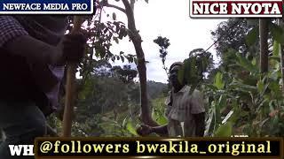 BWAKILA ORIGINAL AWA MWIZI