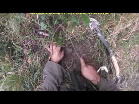 Hunters italian white truffles- Go Pro Hero 3 Silver