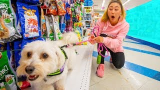 Buying my puppy EVERYTHING she touches!!