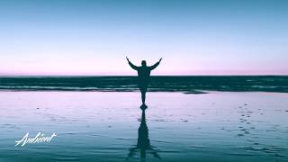 Dodo Danciu - Fly Away With Me